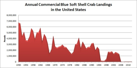 Commercial softshell blue crab landings in the United States