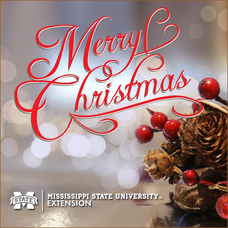 Christmas_SM_EXT(1)