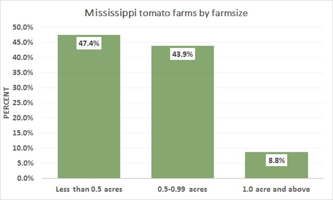 2012-MS-Tomato-Farms-By-Sizes