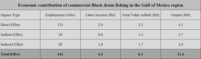 Black-drum-Gulf-economic-contribution