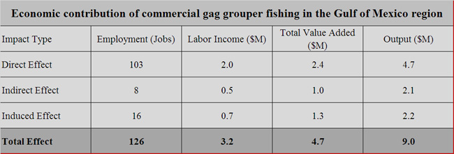 Gag-grouper-Gulf-economic-contribution