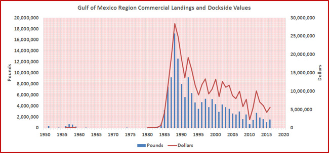 yellowtail-tuna-landings-year-gom