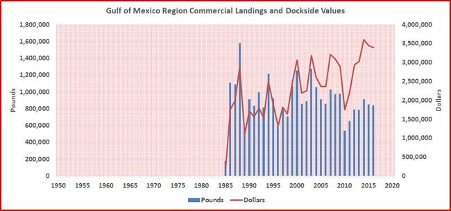 grouper-yellowedge-landings-year-gom